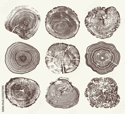 Leinwand Poster Wood Tree Rings Vector Set
