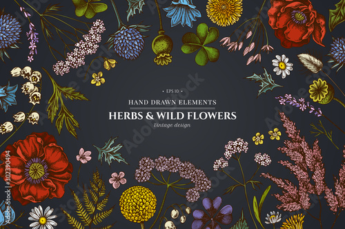 Floral design on dark background with shepherd's purse, heather, fern, wild garlic, clover, globethistle, gentiana, astilbe, craspedia, lagurus, black caraway, chamomile, dandelion, poppy flower, lily - 302390494