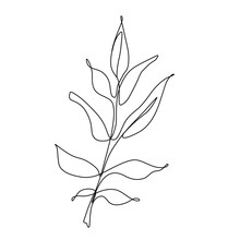 One Line Leaf Vector Drawing. Botanical Continuous Line Contour Illustration