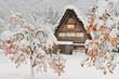 canvas print picture - 【世界遺産】[岐阜県]白川郷の冬景色