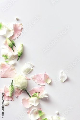 Deurstickers Bloemen Flowers composition. Rose flower petals on white background with copy space. Gentle petals top view