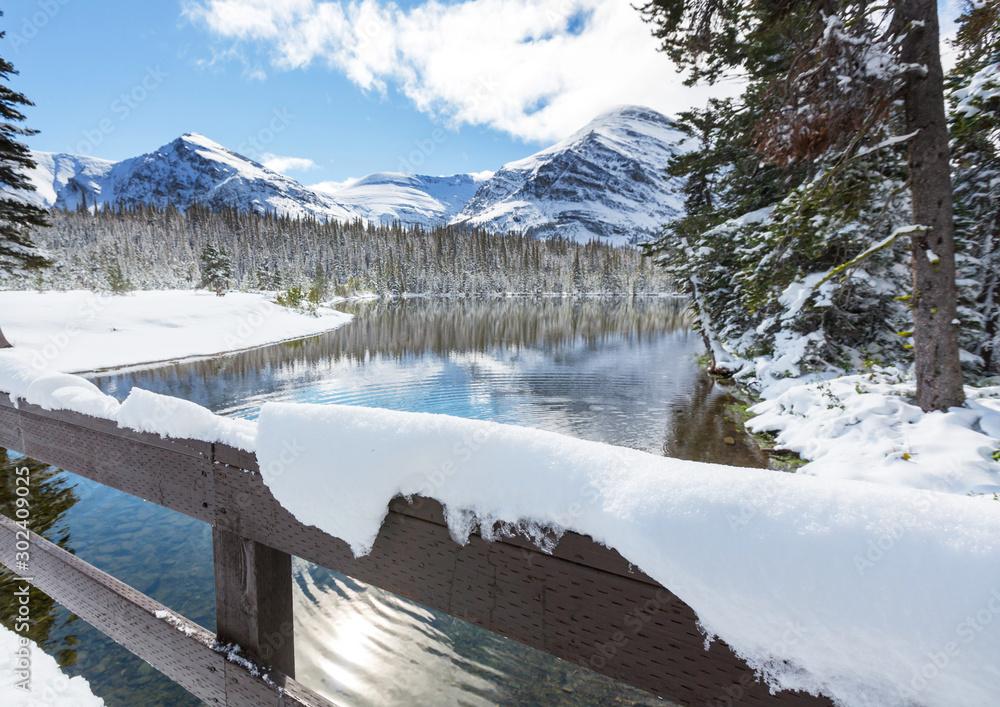 Fototapety, obrazy: Winter in Glacier Park