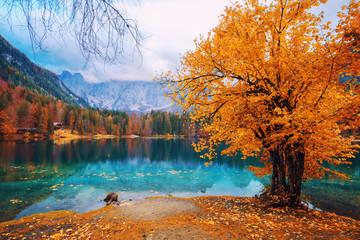 Obraz na Szkle Optyczne powiększenie Lake Fusine - Lago di Fusine- in north Italy in the Alps.