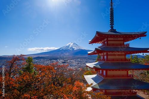 Cuadros en Lienzo 富士山と紅葉