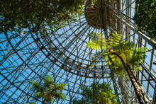 温室のドーム
