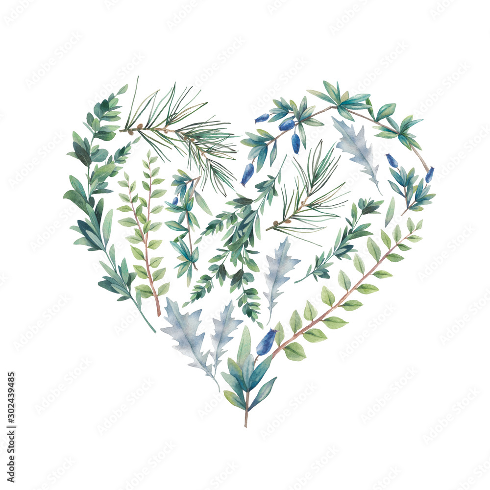 Fototapety, obrazy: Watercolor winter plants heart. Hand drawn floral illustration isolated on white background. Natural graphic label: heart silhouette consist of leaves and branches