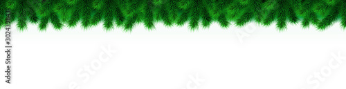 Fotografia  Wide christmas tree border isolated on white background