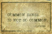 Common Sense Voltaire