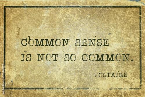 common sense Voltaire Fototapete