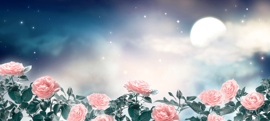 Fototapeta Romantyczny Fairytale fantasy photo background of magical deep blue dark night sky with shining stars, glowing moon, clouds and beautiful fairy pink rose flower garden. Idyllic tranquil fabulous panoramic scene.