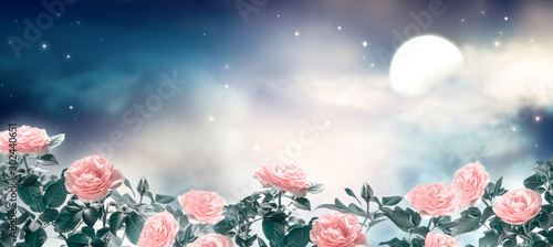 Fairytale fantasy photo background of magical deep blue dark night sky with shining stars, glowing moon, clouds and beautiful fairy pink rose flower garden. Idyllic tranquil fabulous panoramic scene.