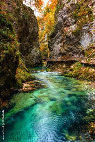 Valokuvatapetti Famous Vintgar gorge (soteska Vintgar) or Bled Gorge (Blejski vintgar) in Slovenia