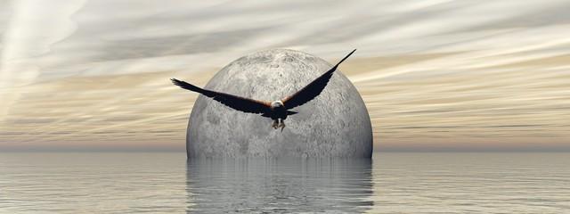 Fototapetaflying an eagle with a beautiful full moon landscape - 3d rendering