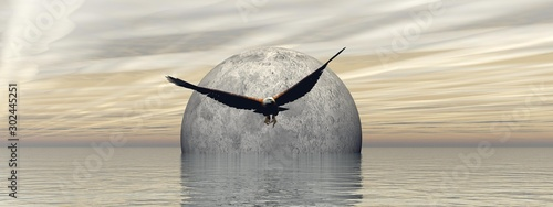 Fotografie, Tablou  flying an eagle with a beautiful full moon landscape - 3d rendering