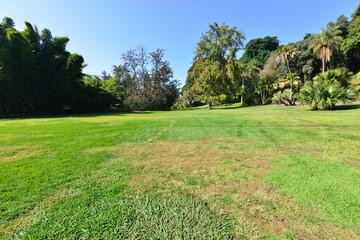 A garden at an American country estate.