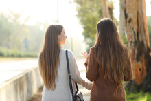 Back View Of Two Women Walking And Talking In A Park