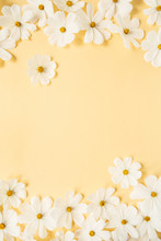 Minimal Styled Concept. White Daisy Chamomile Flowers On Pale Yellow Background. Creative Lifestyle, Summer, Spring Concept. Copy Space, Flat Lay, Top View.