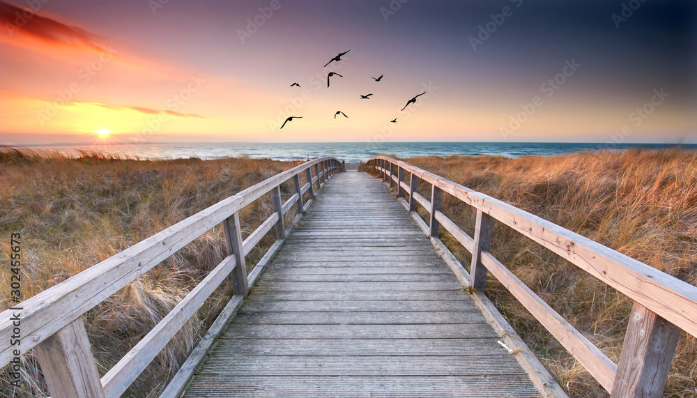 Fototapety, obrazy: romantischer Weg zum Strand
