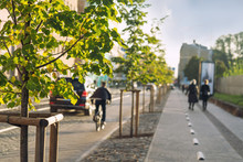Street In The City With Trees And A Cyclist