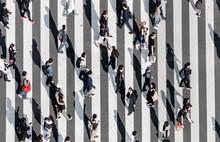 Zebra Crossing   Ginza Street Crowd Walk On Crosswalk Tokyo Japan