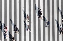 Zebra Crossing   Ginza Street ...