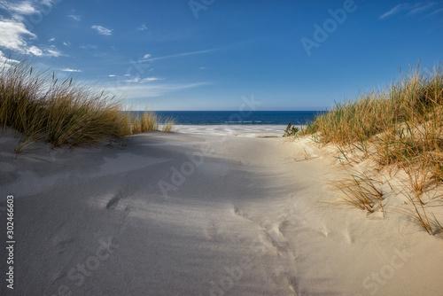 Fototapeta Wandering sands / dunes - Poland, Słowinski National Park, Łeba town obraz