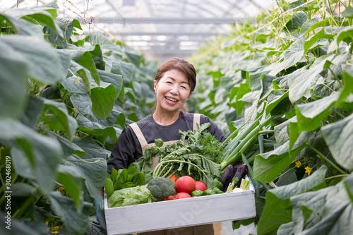 Fototapeta 収穫のイメージ 野菜を持つ女性 obraz