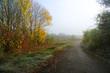 canvas print picture - Weg im Herbst