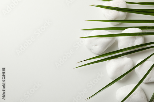 Garden Poster Spa Sea stones and palm branch on white background, space for text. Spa concept