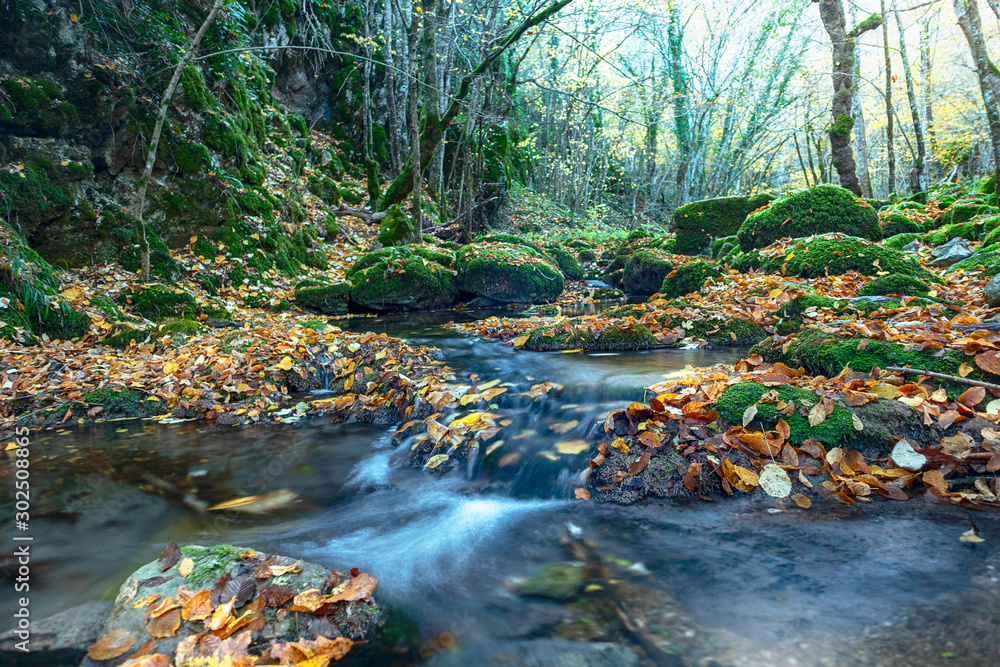 Fototapety, obrazy: Mountain wild river valley landscape. landscape along  Mladejka river in  Mladejkovo,Bulgaria. Raging mountain river in yellow valley. Bulgaria nature and travel background. - Image