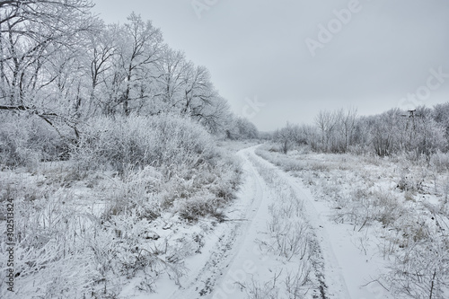 Wintry landscape with a dirt road