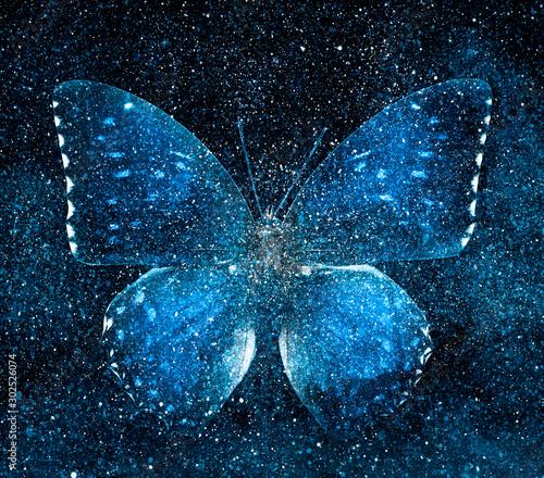 Obraz Universe starry sky with butterfly - fototapety do salonu