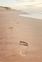 Footsteps In The Sand Of The B...