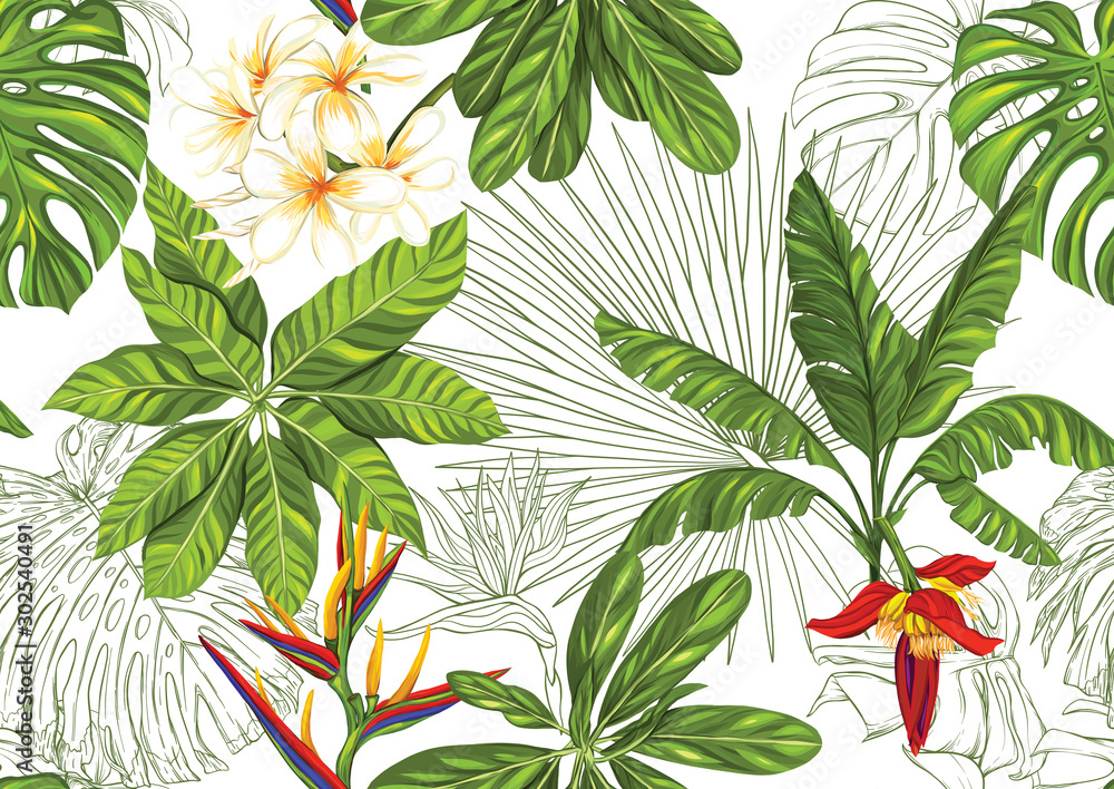 Tropical plants and flowers. Seamless pattern, background. Colored and outline design. Vector illustration. Isolated on white background