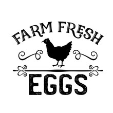 Farm Fresh Eggs Vector. Chicken, Kitchen Clip Art. Farmhouse Wall Decor. Isolated On Transparent Background.