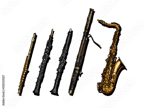 Woodwind musical instruments set Canvas Print