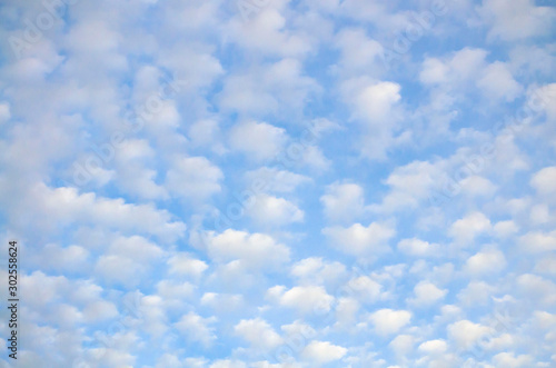 cloudscape with altocumulus clouds at sunny day Canvas Print