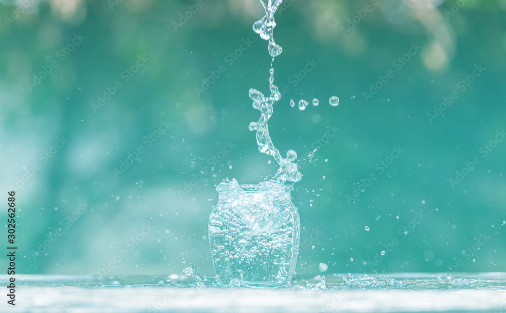 Fototapeta Water splash in glass Select focus blurred background.Drink water pouring in to glass over sunlight and natural green background.Nature conservation concept.