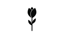 Rose, Tulip Icon Vector