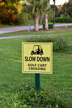 Slow Down Golf Cart Crossing S...