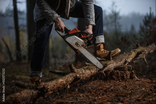 Autocollant pour porte Arbre Lumberman work with chainsaw sawing a tree in the forest. Lifestyle work. Male hands with a saw in the woods. Detail . Hard work with a saw.