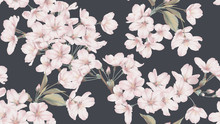 Floral Seamless Pattern, Somei Yoshino Sakura Flowers With Branch And Leaves On Dark Grey
