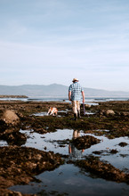 Man And Dog At Tide Pool