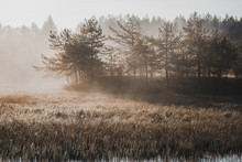 Moody Filtered Image Of Misty Morning At Lake In Autumn