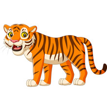 Cartoon Tiger Isolated On White Background