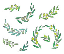 Vector Olive Branch Set With L...