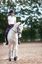 Young Pretty Teenage Girl Equestrian Practicing Horseback Riding On Manege