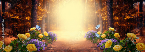 Spoed Foto op Canvas Weg in bos Fantasy fabulous wide panoramic photo background with autumnal pine tree forest, summer rose and bluebell campanula flower bush, flying blue butterfly and mysterious foggy trail road with copy space