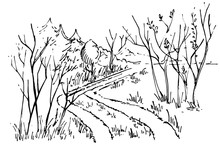 Sketch Path In The Forest. Han...