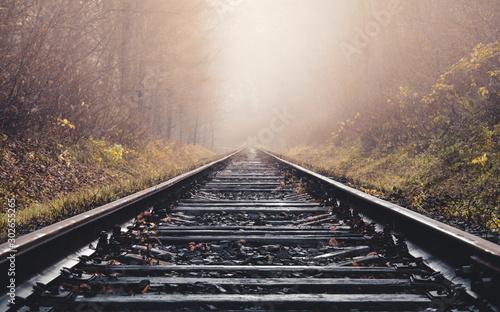 Fotomural  railway tracks in fog